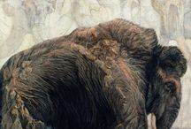 All About Mammoths