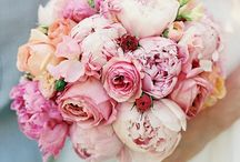 Wedding: Bouquets  / Beautiful flowers I love used to create wedding flowers for the bride and her bridesmaids.