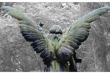Angel / Engel