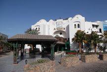 Hotel Arabella Azur Resort 2012 / Hotel Arabella Azur Resort 2012 in Ägypten. Lesen sie mehr über unseren Urlaub auf unserer Homepage http://tuerkei-sunlife.de.to , wo sie auch viele Interessante Tipps und Wissenswertes über Land und Leute erfahren, dokumentiert mit vielen Bildern. http://tuerkei-sunlife.de.to