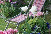 Si j'avais un jardin... / Un jardin anglais, un jardin potager, un petit coin de vert volé à la ville...