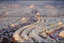Best Hajj Packages in USA / Hajj packages from USA, ensuring the purchase of low cost/affordable air tickets, ease in accessing Ulemas, Scholars .