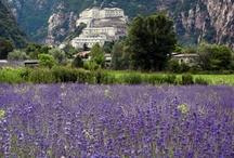 Beautiful Italy: Valle d'Aosta