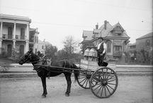 Atlı araba fayton