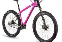 belt or pinion bike frames