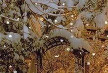 Winter xmas