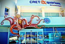 Ενυδρείο Cretaquarium, Ηράκλειο - Κρήτης / Aquarium Cretaquarium, Heraklion - Crete