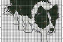 Border collie pixel