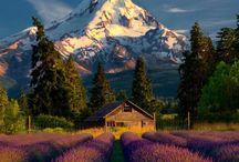 Foto montagne