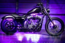 Freedom Rider