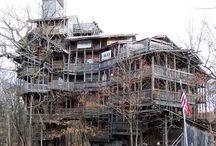 treehouse samples