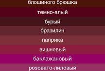 Цветология