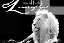 Lion of juddah