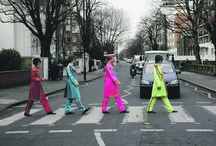"famous ""Zebra"" (first Beatles)"