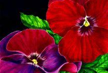 Flora inspire art / by Charlotte Freeman
