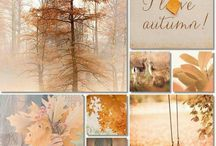Seasons/ Seizoenen