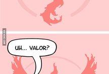 TEAM VALOR BITCHES!~