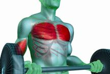 Artykuły /Sport i fitnes