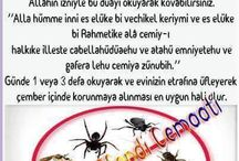 hasere dua