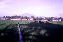 Cianjur