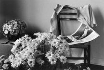 Andre Kertész / André Kertész (eredeti nevén Kertész Andor) (Budapest, 1894. július 2. – New York, 1985. szeptember 28.) magyar származású fotóművész.