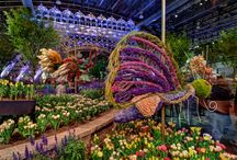 Philadelphia Flower Show / by John Vena Inc.