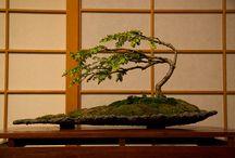Ikebana handgemaakte vazen