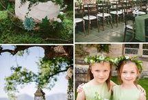 Dekoracje - zieleń