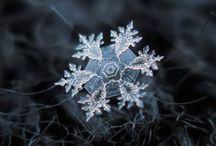Snowflake photography / Macro Photography