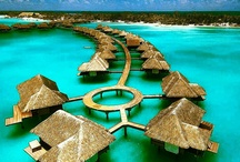 Dream destination