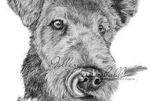 Hundezeichnungen / Hier möchte ich euch gerne mein Hobby vorstellen :) Besucht doch auch mal meine Facebookseite https://www.facebook.com/Gallery.Seebald/