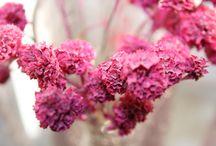 Różowy Pink / Inspiracje