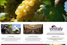 VIVOCANTINE.IT / New web site for VivoCantine, very important Italian Wine factory.