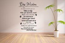 doggie day care♡ / by Rachel Stewart