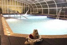 Hoteles con Spa / Descubre algunos de los los hoteles con spa y balnearios más bonitos y acogedores. Como sabrás, los beneficios de las aguas termales de los balnearios son infinitos y a quién no le apetece disfrutar de un rato de relax en su viaje. Para ello, ¡qué mejor que un hotel con un buen spa!