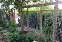 Wire Fences