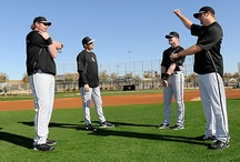 Sox Spring Action