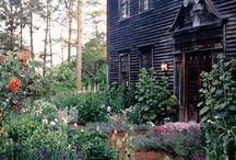 GREEN, GREEN GARDEN / Garden ideas and inspiration.