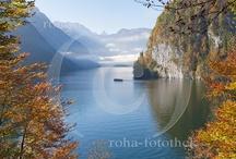roha-fotothek - Berchtesgadener Land / Fotos aus Bayern und Österreich mit Landschaft, Land und Leute und Brauchtum