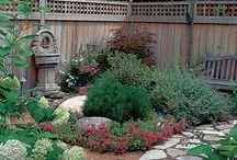 Backyard ideas / by Belinda Jain