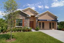 Florida- Chattanooga Community