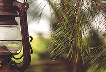 Cabane Perchée / Découvrez nos Cabanes perchées ! Version Voyages vous offre l'opportunité de partir vous ressourcer en pleine nature, vous en rêvez ? Dormir perché en haut des arbres et regarder les étoiles.... Partez pour un week-end 100% détente dans le sud de la France, et séjournez dans une cabane spa dans les arbres ! Tout le confort en pleine forêt, rien que pour vous, le temps d'un week-end...Version Voyages www.versionvoyages.fr
