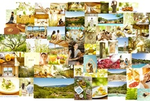 Auberge Mood Boards / www.aubergeresorts.com / by Auberge Resorts