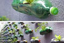 Vegetable Gardens / Inspirational garden ideas.
