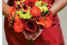 Flowers / by Laura Hartmann