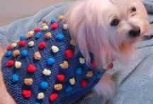 Dog Coats/Sweaters