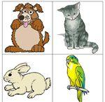 Theme 4- Awesome Animals / Big Day PreK Theme 4