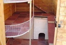 Rabbit shed/run