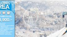 Best Snow's Korea 5D3N 14,900 ฿