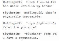 Slytherin/Hufflepuff